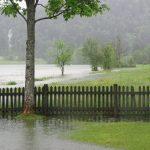 Hochwasser 3 071