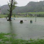 Hochwasser 5 017